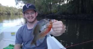 Fishing the Ogeechee River for Redbreast